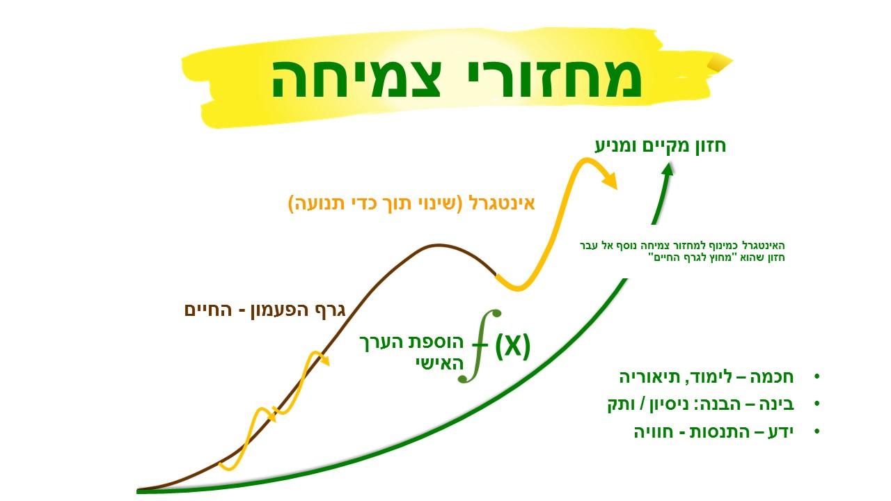 לימודי צמיחה עסקית