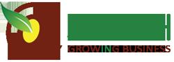 שדה צמיחה אישית-עסקית